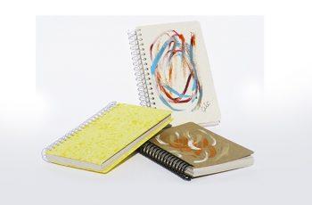 foto mostra três cadernetas para anotação.